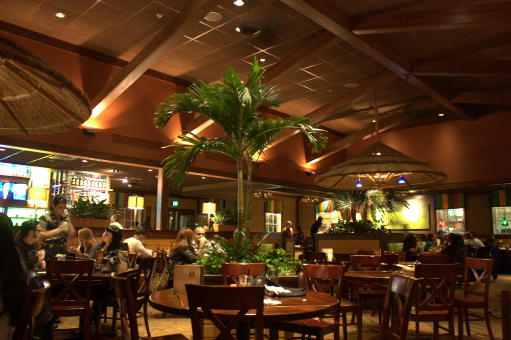 Bahama Breeze Nashua Londonderry News